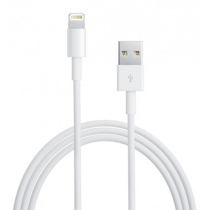 Cable USB-lightning Data Origine APPLE pour iPhone 6S